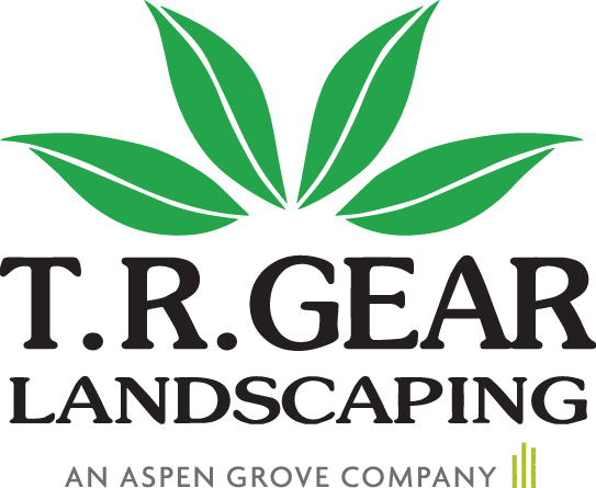 T.R. Gear